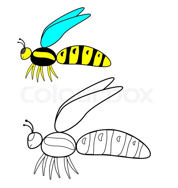 Color by example, insects - wasp | Stock Vector | Colourbox