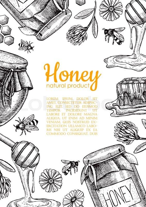 Vector Honey Bee Hand Drawn Illustrations Honey Jar Bee Honeycomb