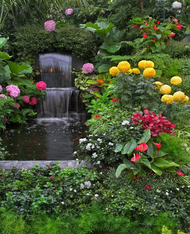 Gold Small Fishes And Magnificent Flower Beds In A Two