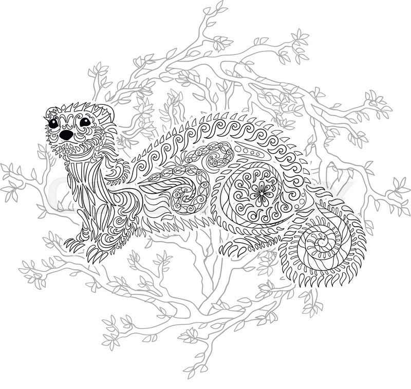 Hand Drawn Ferret In Zen Tangle Style With High Details Coloring Page For Anti Stress Art Therapy Black White Zendoodle Animal