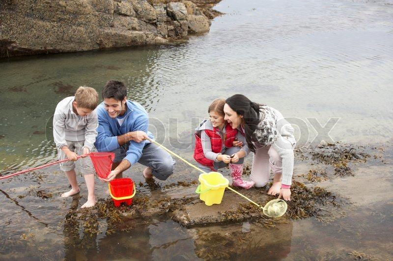 Stock image of 'Young family at beach collecting shells'