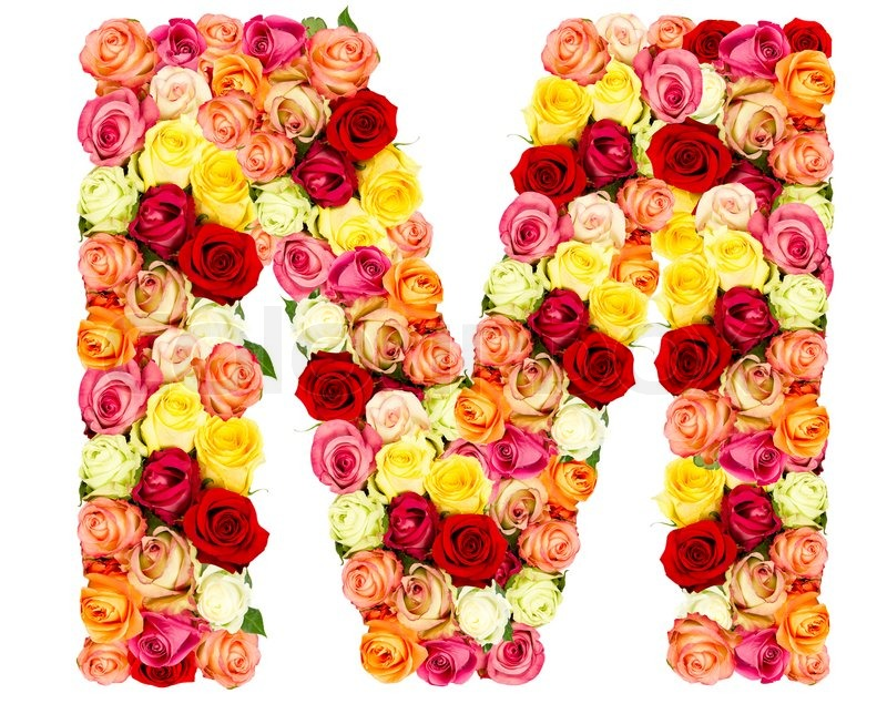 M, roses flower alphabet isolated on white | Stock Photo ...