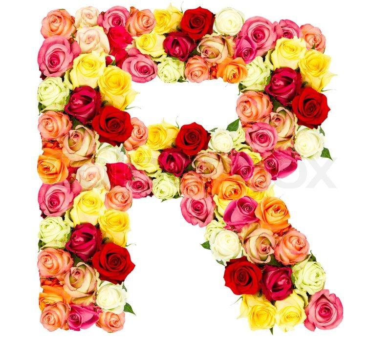R Roses Flower Alphabet Isolated On White