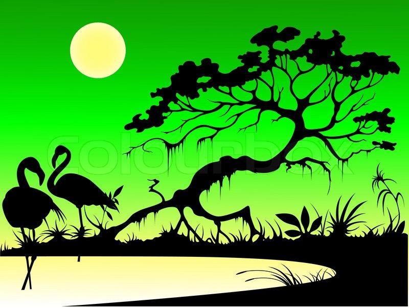 silhouetten von flamingos baum und mond auf einem see in den abend vektorgrafik colourbox. Black Bedroom Furniture Sets. Home Design Ideas