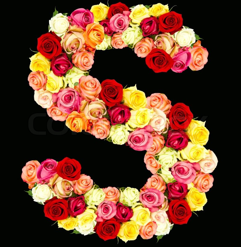 S, Roses Flower Alphabet, Isolated On Black, Stock Photo