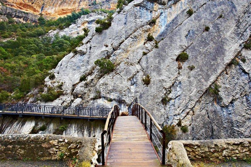stardew valley guide wooden trellis