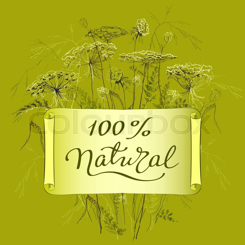 Hand Draw Label Template With Wild Flowers And Herbs. Hundred Percent  Natural Lettering Card. Design For Herbal Cosmetics, Natural And Organic  Product Store ...