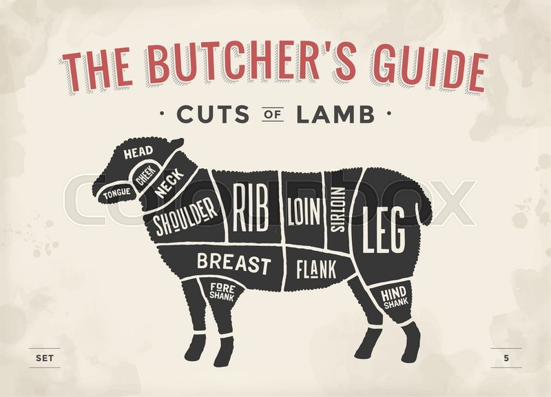 800px_COLOURBOX19990828 cut of beef set poster butcher diagram and scheme lamb vintage