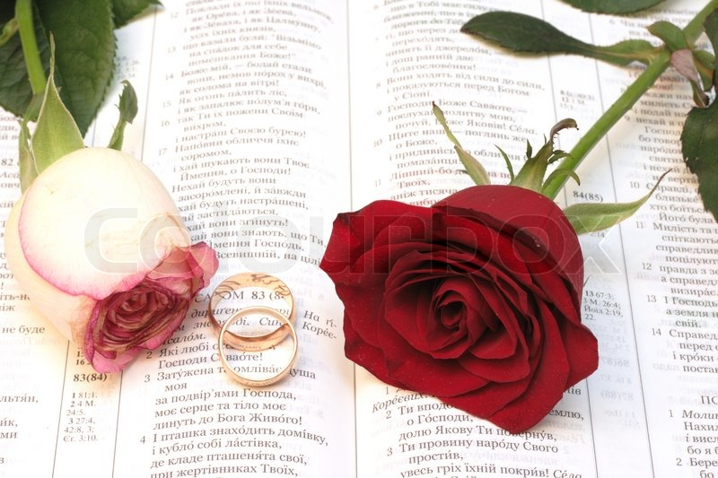 Two red roses and wedding rings on Bible Stock Photo Colourbox