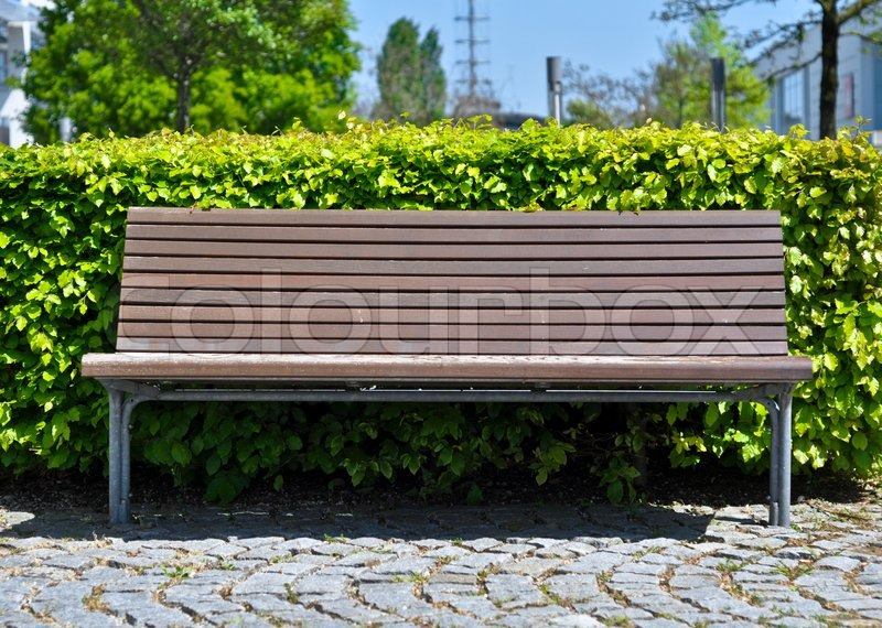 Wooden Bench In Front Of Bush Stock Photo Colourbox
