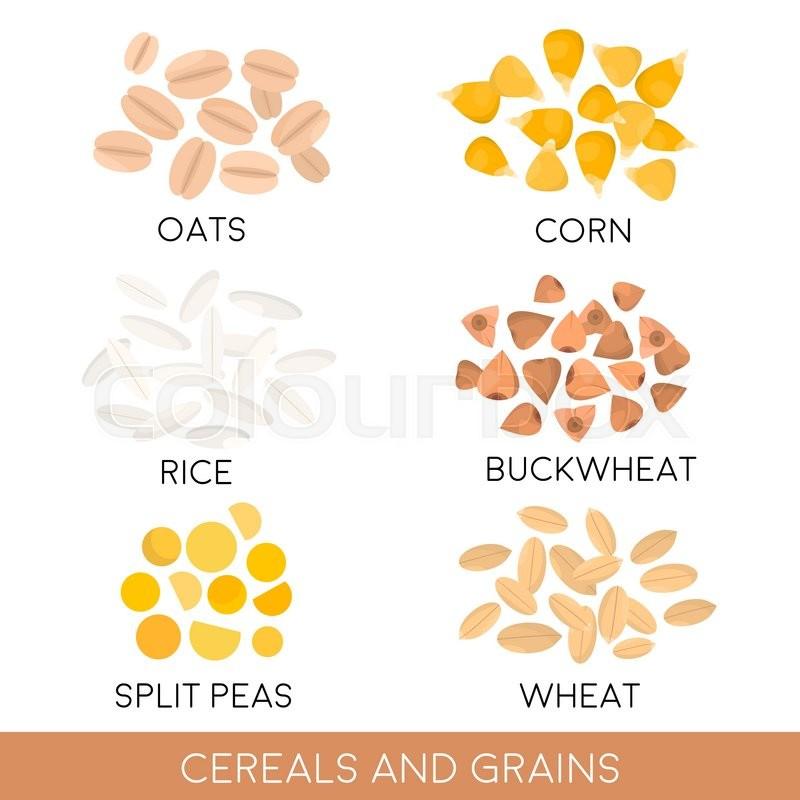 Cereals and grain, oats, rice, corn, split peas, wheat, buckwheat ...
