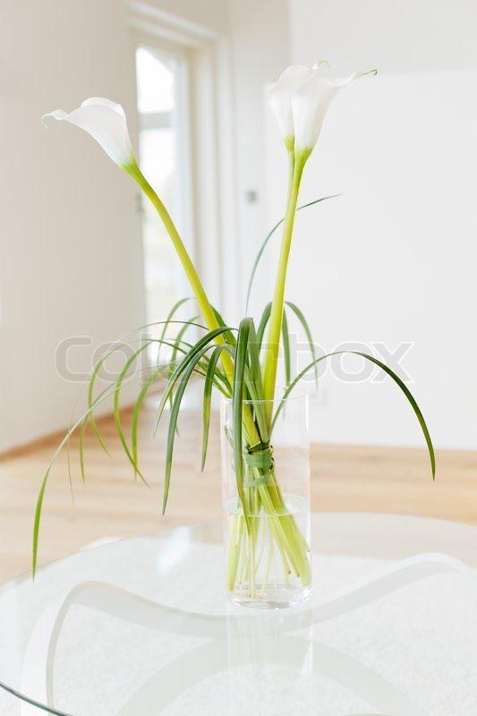 schmucklilie zantedeschia aethiopica blumen in einer vase kurze sch rfentiefe bereich. Black Bedroom Furniture Sets. Home Design Ideas