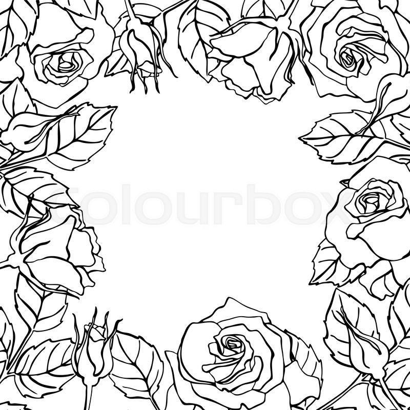Vector line rose square frame great for wedding invitations vector line rose square frame great for wedding invitations greeting birthday and valentine cards stock vector colourbox stopboris Image collections