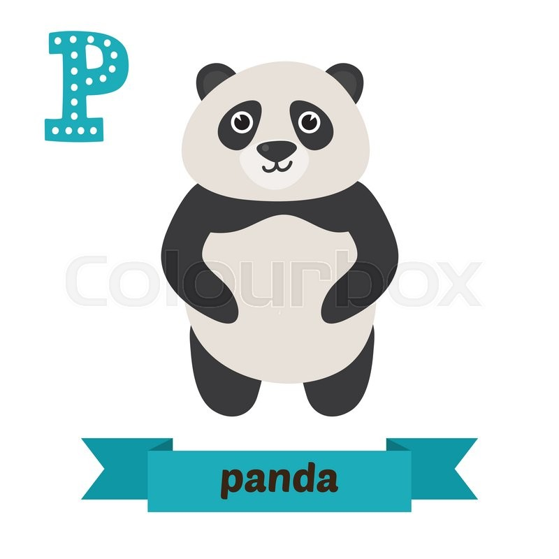 panda. p letter. cute children animal alphabet in vector. funny
