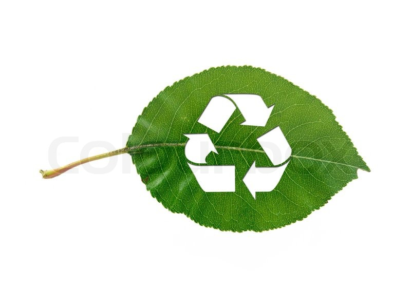 Cool Recycle Symbol a Leaf Recycle Symbol Isolated