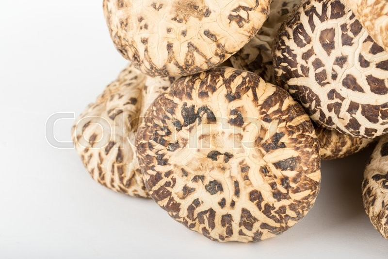 Stock image of 'Dried shiitake jumbo size on isolate white background with copyspace'