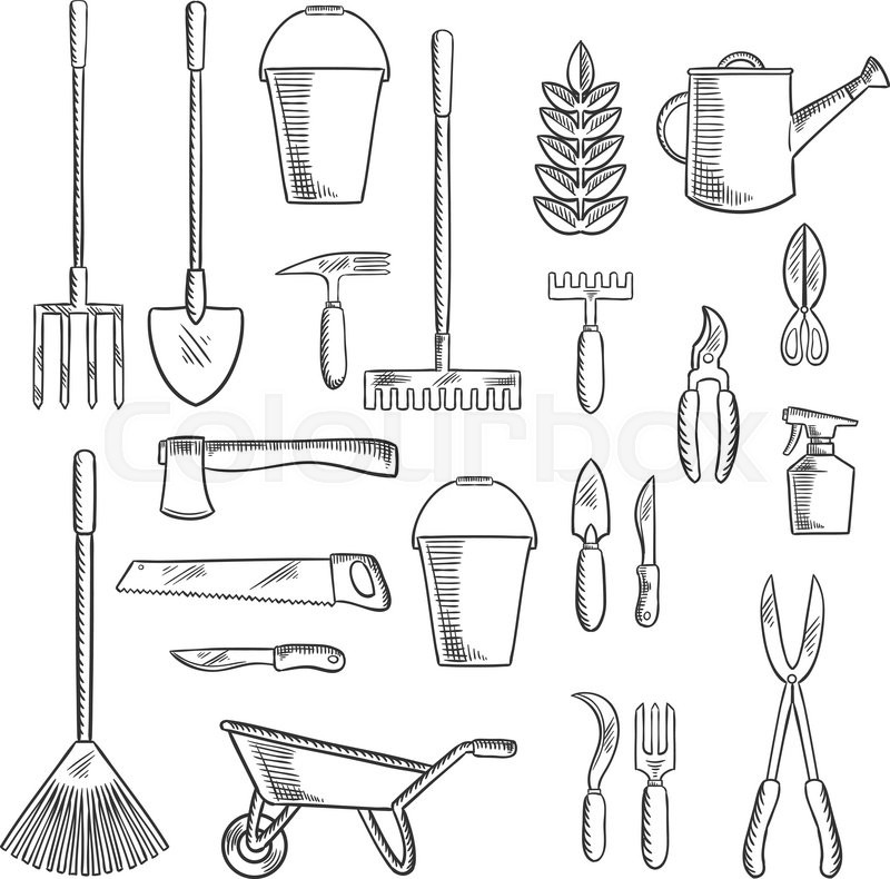 Watering Can And Plant With Gardening Hand Tools Sketches Of Rakes, Shovel,  Axe And Saw, Spading Fork, Wheelbarrow And Buckets, Trowel, Forks, ...