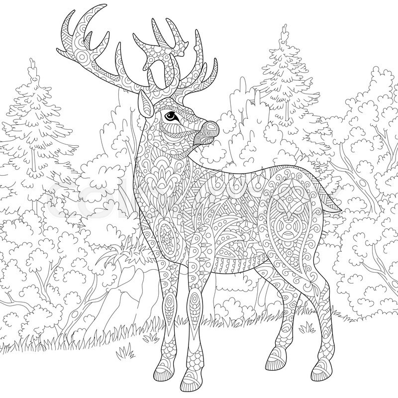 Zentangle stylized cartoon deer stag christmas reindeer for Deer coloring pages for adults