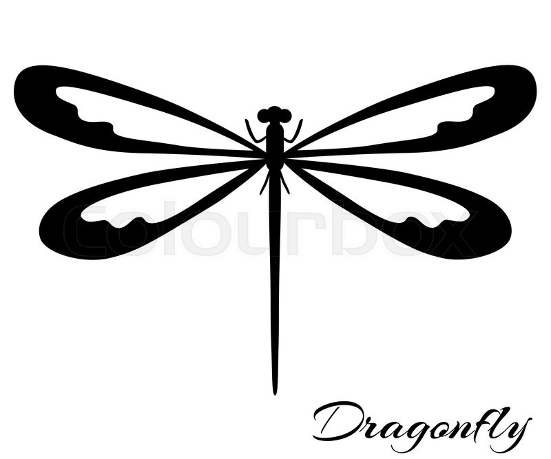 black and white dragonfly silhouette vector backgrounds prints rh colourbox com dragonfly vector format dragonfly vector illustration