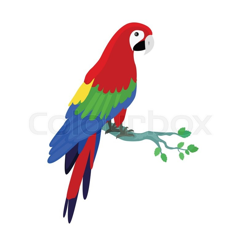 how to draw a parrot on a branch
