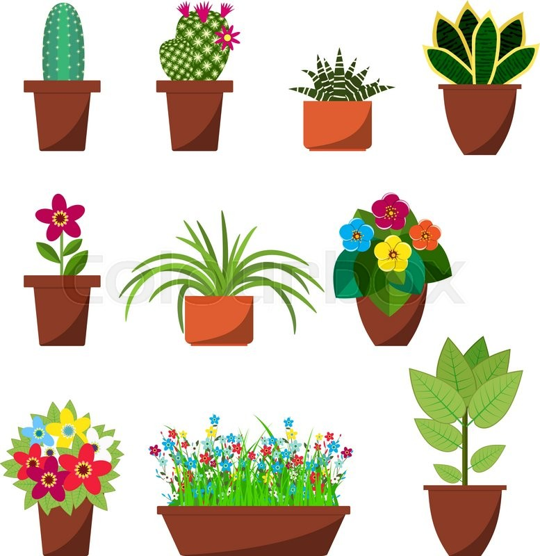 House plants and flowers for interior decoration flat icons ...