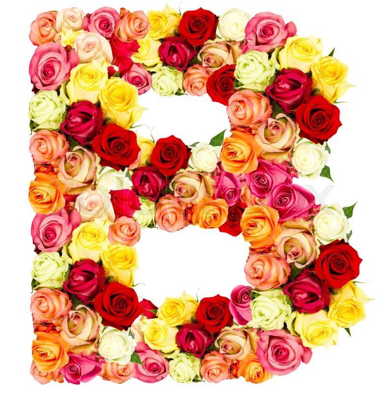 R, roses flower alphabet isolated on white | Stock Photo | Colourbox
