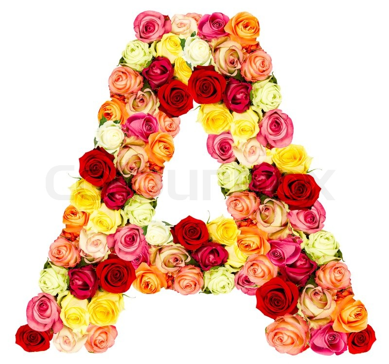 V roses flower alphabet isolated on white stock photo colourbox altavistaventures Choice Image