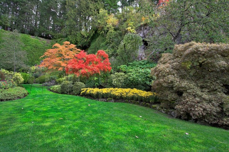 The green lawn surrounded by flower beds and blossoming trees | Stock ...