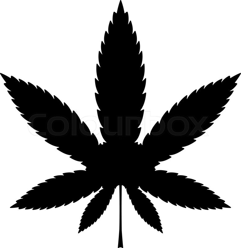 cannabis or marijuana leaf black vector icon illustration stock rh colourbox com marijuana leaf vector free download marijuana leaf vector file