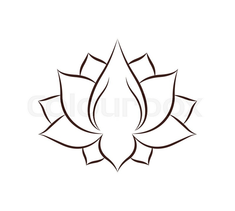 Lotus Flower Drawing Isolated Icon Stock Vector Colourbox