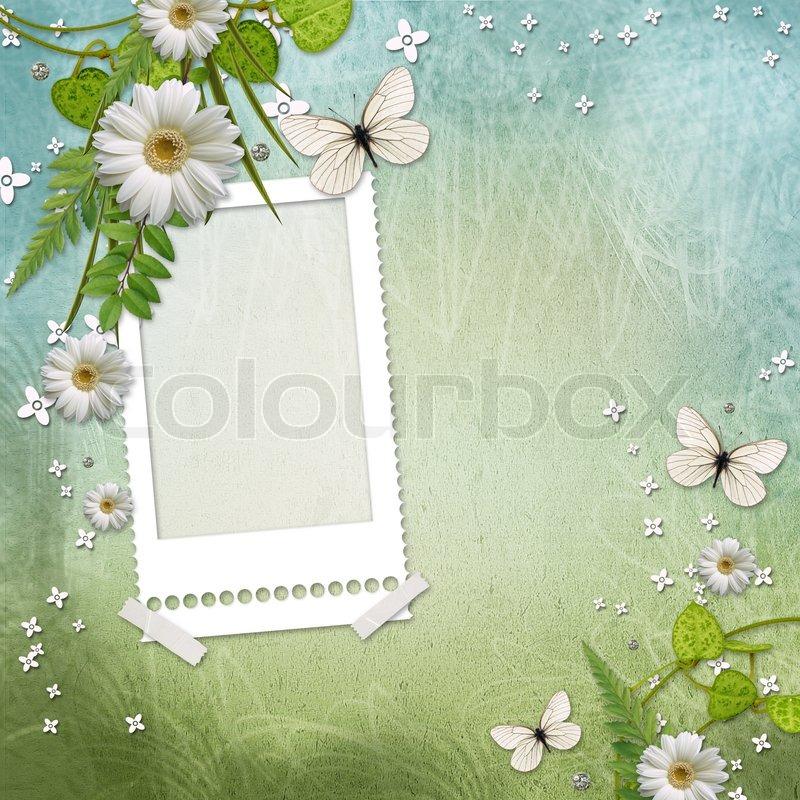Papier Rahmen mit schönen Gänseblümchen und Schmetterling ...