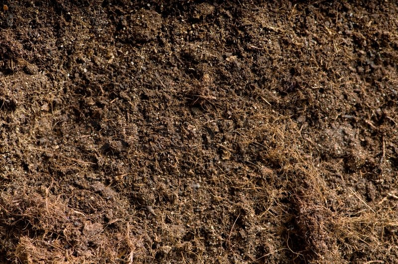 Close up of soil can be used as background stock photo for Where can you find soil