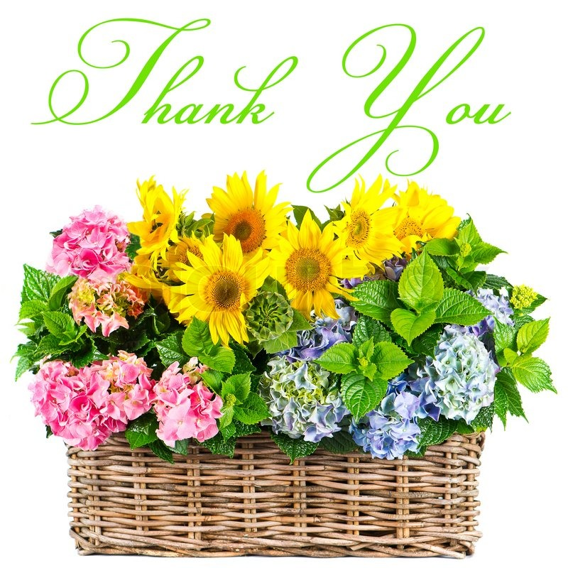 Colorful flowers thank you card concept stock photo