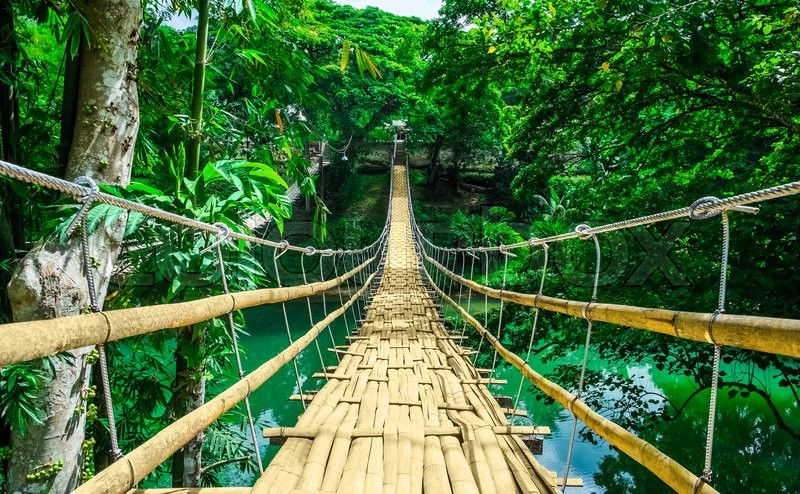 Bamboo pedestrian hanging bridge over river in tropical forest, Bohol, Philippines, Southeast Asia, stock photo