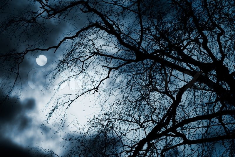 Scary dark scenery with naked trees full moon and clouds for Creepy trees for halloween