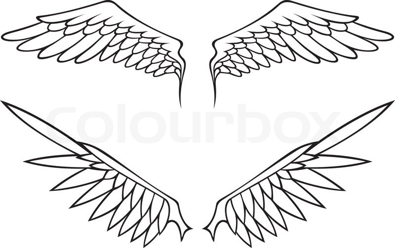 Two Pairs Of White Open Angel Or Bird Wings Isolated On