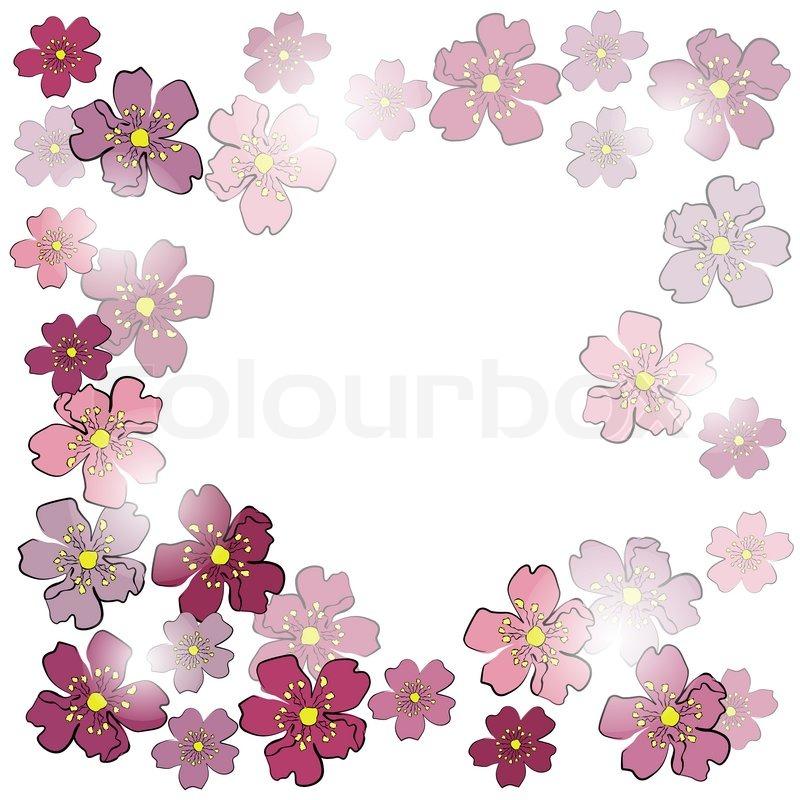 Rahmen von sakura Blumen im Sonnenlicht | Stockfoto | Colourbox