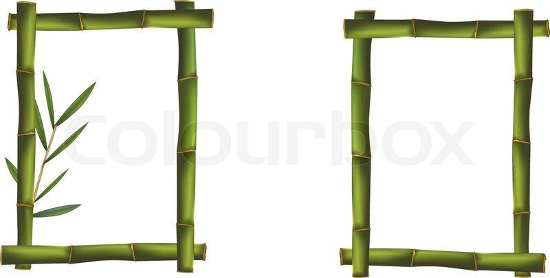 Green bamboo frames. Vector.   Stock Vector   Colourbox