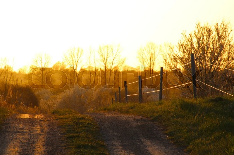 Stock foto af 'Country road in a beautiful sunset'
