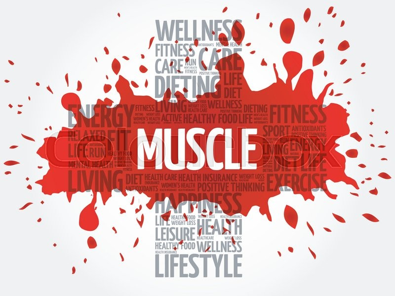 Muscle Word Cloud Health Cross Concept