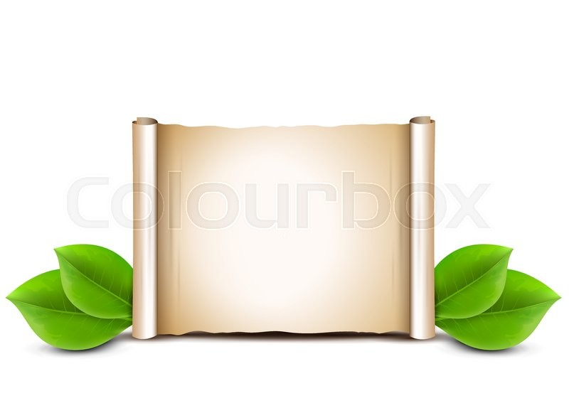 Old paper scroll and green leaves     | Stock vector | Colourbox