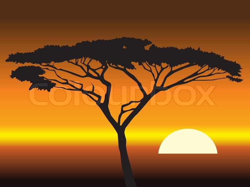 African sunset background  abstract     | Stock vector | Colourbox