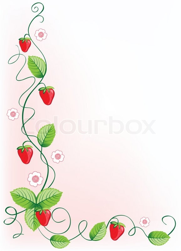Ripe Strawberries And Green Leaves With Flowers Vector Illustration Border Vector 2048581 on Swirl Border