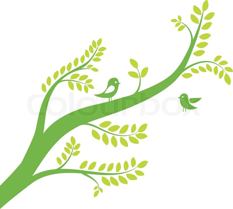 Spring Tree With Birds Colorful Vector Illustration Vector 2048590