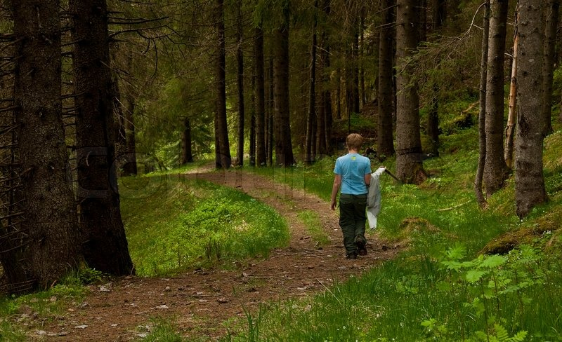 A Young Boy Walking Alone In The Forest Stock Photo Colourbox