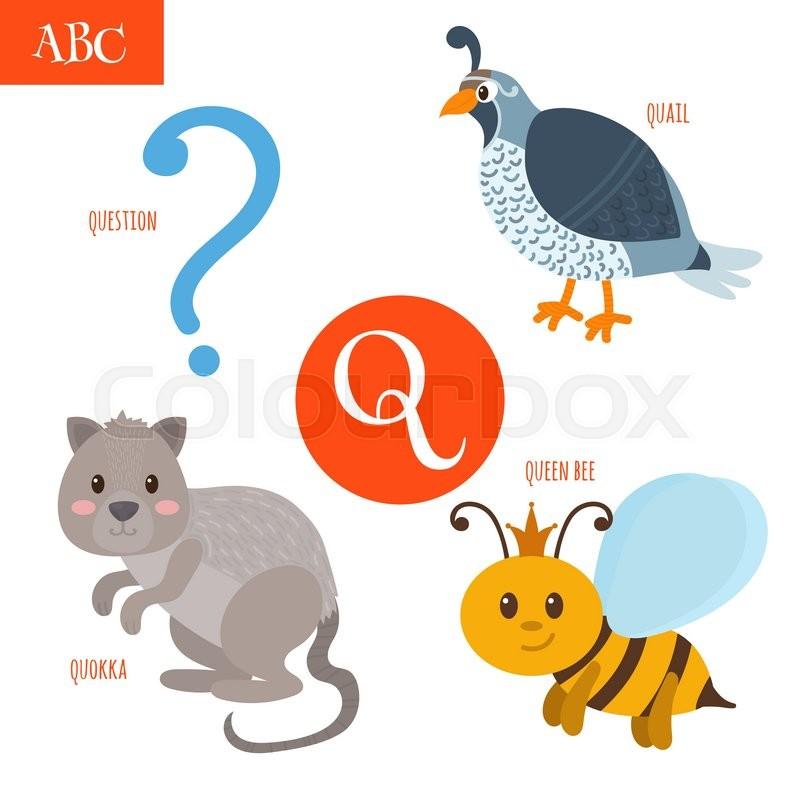 Q Activities  Preschool Express by Jean Warren Preschool