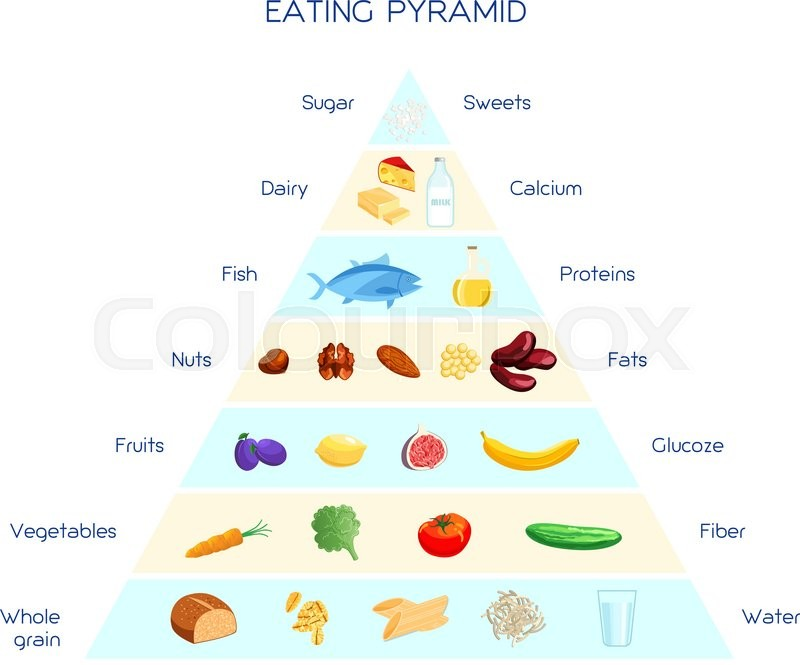 Vector Infographics Healthy Eating Pyramid Daily Nutrition System Proteins Carbohydrates And Fats Based Diet Balanced Concept