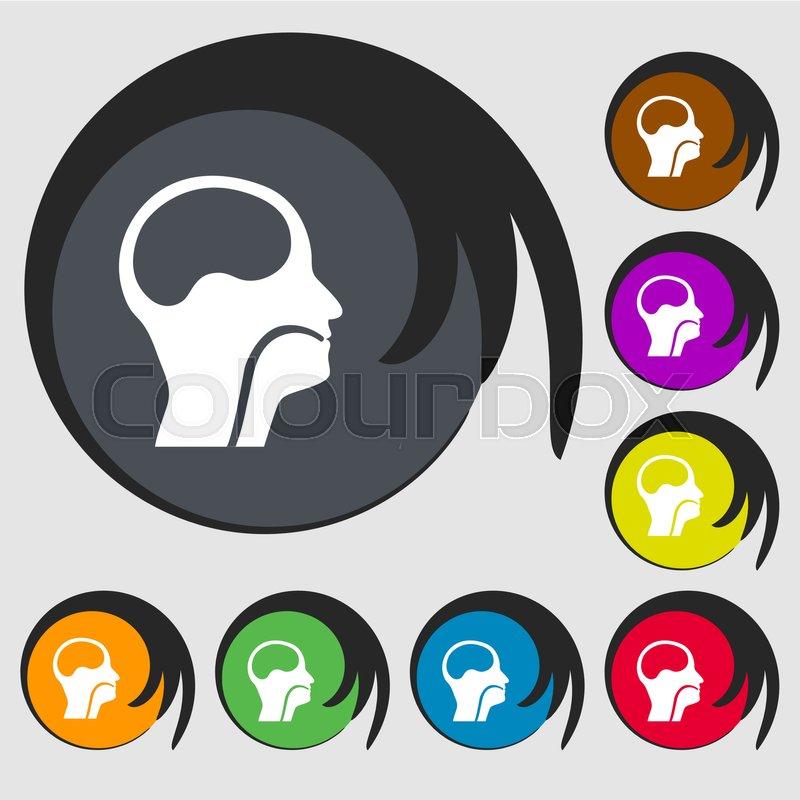 Larynx Medical Doctors Otolaryngology Sign Icon Symbols On Eight