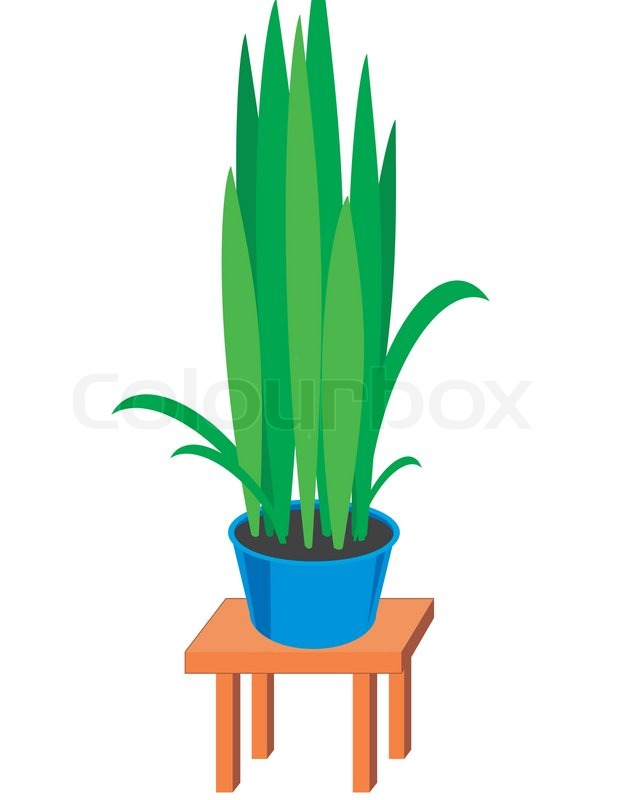 House plants in dark blue pots on brown table color Colorful pots for indoor plants
