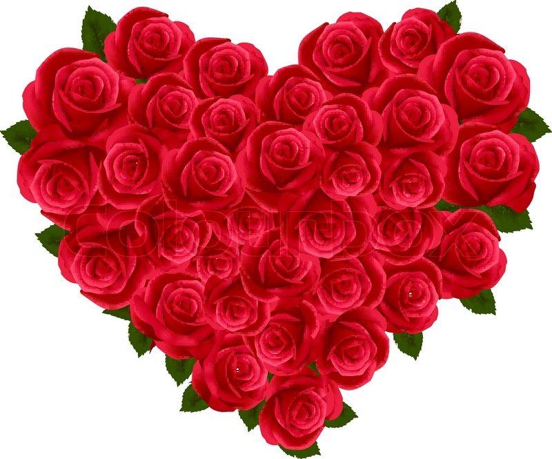 valentine herzen aus rosen  stockvektor  colourbox